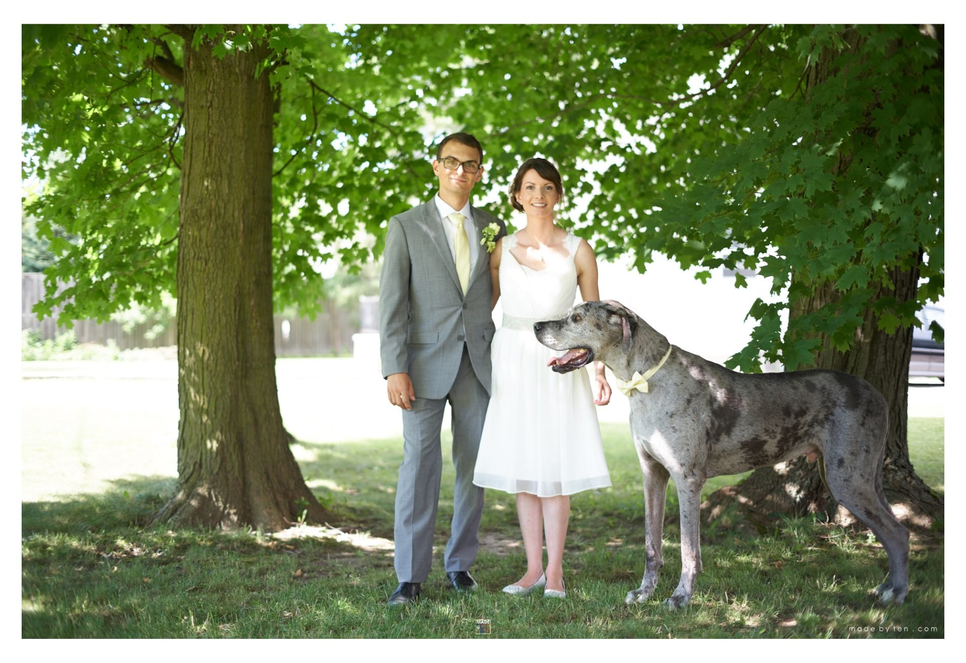 Wedding Photography GTA Portrait with Dog